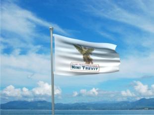 CNT Flag 1