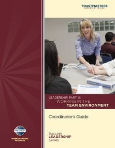 Working in the team environment